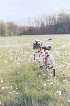 Spring road. Image via: https://www.pinterest.com/pin/116319602852223286/