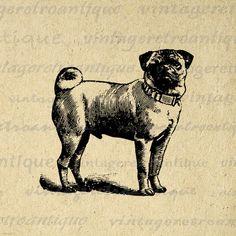 Pug Dog Digital Image Download Collage by VintageRetroAntique