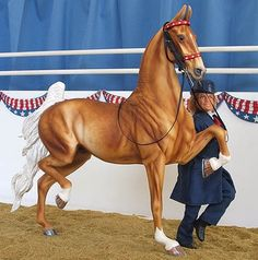 Stonewalls Good As Gold  Info: Palomino Saddlebred Gelding  Mold: Trad. AR Haute Aire  Shown by Donna Miller - Shannon