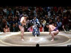 January 2016 - Day 11 - Kakuryu v Kaisei - YouTube