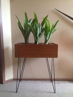 Kurrlson teak veneer planter box on hairpin legs #kurrlson #hairpinbend #hairpinlegs