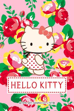 Sanrio Hello Kitty, Hello Kitty My Melody, Hello Kitty Cake, Hello Kitty Items, Hello Kitty Pictures, Kitty Images, Hello Kitty Iphone Wallpaper, Bff, Cat Character