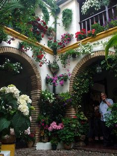 patio 2 * Patios de Córdoba
