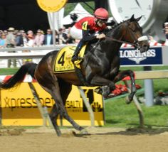 HE'S ACHANCE gets some air in the opening strides of the Sir Barton Stakes at Pimlico Race Course on Preakness Stakes Day.