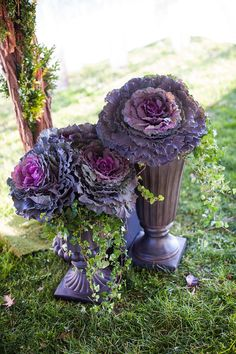 Flowering purple cabbage in vases- perfect for the entrance to the evil path. Tent Decorations, Reception Decorations, Wedding Centerpieces, Wedding Ceremony Flowers, Purple Wedding Flowers, Wedding Dress, Amazing Weddings, Real Weddings, Country Chic