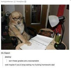 Homework, tumblr funny