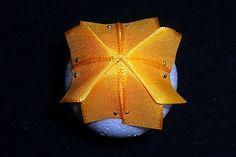 Falešný patchwork - vejce - návod podruhé | Moje mozkovna Nova, Insects, Brooch, Blog, Scrappy Quilts, Brooches