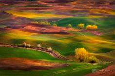 Palouse, USA