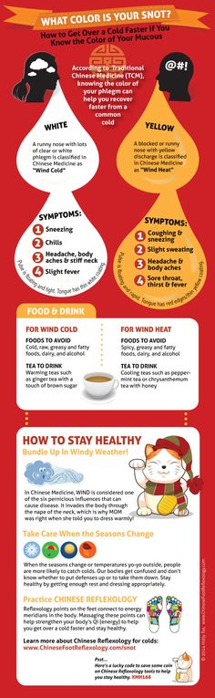 Chinese Medicine Hot And Cold Foods For Dogs