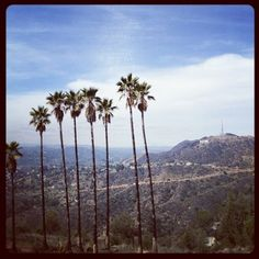 Griffith Observatory Hike | Yelp     I've heard that Uncle L, your dad went here and tented out a few nights.....