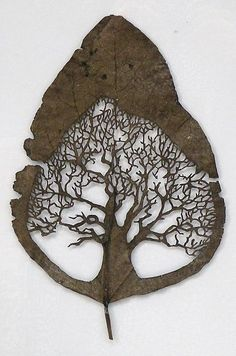 Lorenzo Duran – Leaf Art Carvings