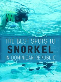 Best Beach Vacation Destinations:The BEST spots to snorkel in the Dominican Republic Best Vacations, Vacation Destinations, Vacation Trips, Vacation Spots, Vacation Ideas, Caribbean Vacations, Romantic Vacations, Italy Vacation, Romantic Travel