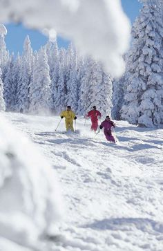 Skiing in Vail this winter!!!