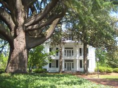 How gorgeous is the Leak-Wall House? This historical home is on E. Washington Street in historic downtown Rockingham. Richmond County, NC