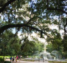 The beauty of Forsyth Park Fountain never fails to amaze us.