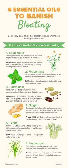Wonderful Ginger Essential Oil Tips And Techniques For Ginger Essential Oils for nausea Basil Health Benefits, Ginger Benefits, Ginger Essential Oil, Best Essential Oils, Lemongrass Essential Oil, Pure Essential, Relieve Bloating, Getting Rid Of Bloating, Health And Fitness