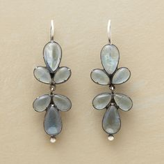 Earrings have never been on my wish list until now