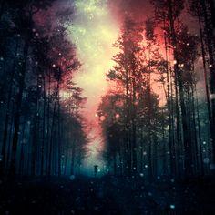 magical forest III by BaxiaArt.deviantart.com on @deviantART
