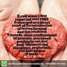 rodyves:  Repost from @officialenvironmentalfacts via @igrepost_app, it's free! Use the @igrepost_app to save, repost Instagram pics and videos, Escherichia coli (E. coli 0157:H7) is usually caused when meat comes into contact with faecal matter.