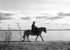 La Source / The Virgin Spring - Ingmar Bergman (1960)