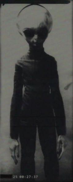 'Skinny Bob'. Constructed from video stills. #alien #aliens #ufos #paranormal