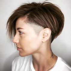 Pixie Bob With A Shaved Temple