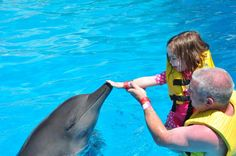 Bring your small children to interact with the dolphins at Dolphinaris!! www.dolphinaris.com #dolphins #fun #mexico #vacation #summer #travel #cancun #rivieramaya #cozumel #tulum