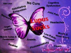 lupus..