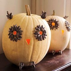 Owl pumpkin decorations!