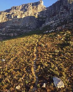 Table Mountain, Cape Town, Wonders Of The World, Grand Canyon, Westerns, Most Beautiful, Africa, City, Nature