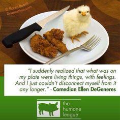 Vegan Quote By Ellen Degeneres Vegetarian Quotes, Vegan Quotes, Going Vegetarian, Going Vegan, Vegan Vegetarian, Vegetarian Facts, The Animals, Vegan Animals, Strange Animals