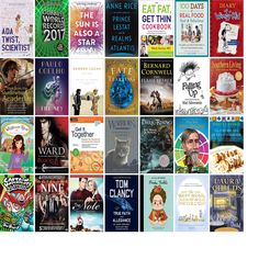 """Wednesday, December 28, 2016: The Bulverde/Spring Branch Library has 13 new bestsellers, three new videos, five new audiobooks, 28 new children's books, and 13 other new books.   The new titles this week include """"Ada Twist, Scientist,"""" """"Guinness World Records 2017,"""" and """"The Sun Is Also a Star."""""""