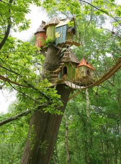 1000 images about casa en los arboles on pinterest tree houses amazing tree house and treehouse - Casas en los arboles girona ...