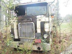 White Freightliner Farm Trucks, Cool Trucks, Big Trucks, Cool Cars, Antique Trucks, Antique Cars, Freightliner Trucks, Rust In Peace, Junk Yard
