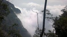 Silent valley view @ Kodaikanal