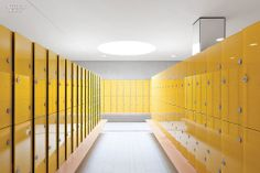 Let's Get Physical: Four International Sports Venues | Projects | Interior Design