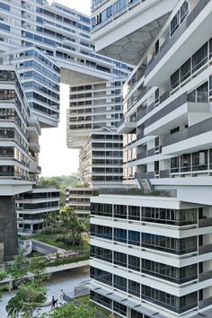 The Interlace, a residential complex designed by the OMA and Ole Scheeren, blends a nontraditional design with verdure.