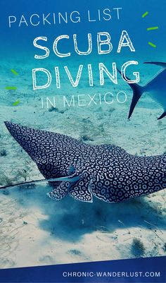What to pack for your scuba diving trip to Mexico? If you plan to snorkel or dive in this beautiful paradise, be sure to check out my scuba diving packing list for Mexico. Mexico Vacation, Cruise Vacation, Mexico Travel, Vacation Deals, Vacations, Gratis Download, Best Scuba Diving, Sea Photography, Diving Equipment