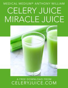 Celery juice recipe (instructions for juicer and blender) - Healthy lifestyleDrinking celery juice is one of the hottest health trends for health and healing. This post contains a recipe for making celery juice and some Detox Drinks, Healthy Drinks, Healthy Eating, Healthy Foods, Cucumber Juice Benefits, Benefits Of Celery Juice, Energy Juice Recipes, Medical Medium Anthony William, Celery Smoothie