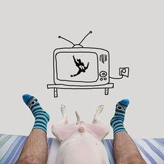ilustraciones-interactivas-perro-jimmy-choo-rafael-mantesso (10)