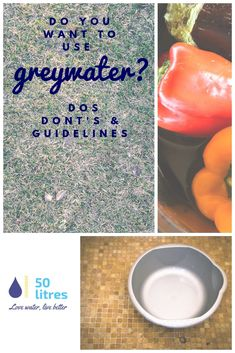 Dos and don'ts for greywater use at home, especially for those of us that have to use untreated greywater.  #lovewater #greywater #sustainability