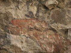 Cueva del Ratón, Sierra de San Francisco, Baja California Sur, Mexico. https://www.facebook.com/media/set/?set=a.197005603732629.30723.169024183197438=3