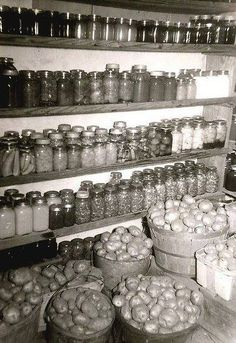 Think of how you would feel, a hundred years ago, seeing this in your cellar as winter approached. You'd feel invincible. I think all the work put into canning, picking and digging for all that food.