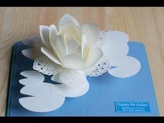 pop-up card【スイレン2016】-water lily 2016- - YouTube