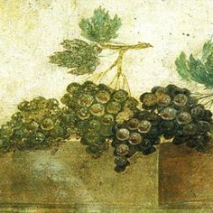 Grapes, roman fresco detail