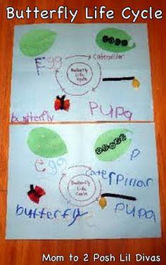 Mom to 2 Posh Lil Divas: ABC Fun C is for Caterpillar