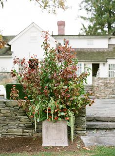 Photography: Heather Waraksa - heatherwaraksa.com   Read More on SMP: http://www.stylemepretty.com/2015/10/07/cozy-fall-winvian-wedding/