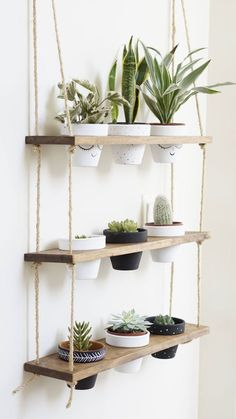 TriBeCa Trio Pot Shelf / Hanging Shelves / Planter Shelves / Floating Shelves / Three Tiered Shelf If you are looking for the showstopper of plant displays, look no further! Our hanging shelves joined forces with our planter stands and magic happene. Diy Hanging Shelves, Plant Shelves, Window Shelf For Plants, Diy Hanging Planter, Small Shelves, Kitchen Window Shelves, Outdoor Shelves, Rope Shelves, Shelf Display