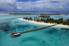 Maldives....island located in the Indian Ocean...who cares about sharks when you can stay at a place like that right?