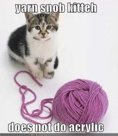 I'm about as far from a yarn snob as they get! I'll do any kind of yarn - I have no shame! :)